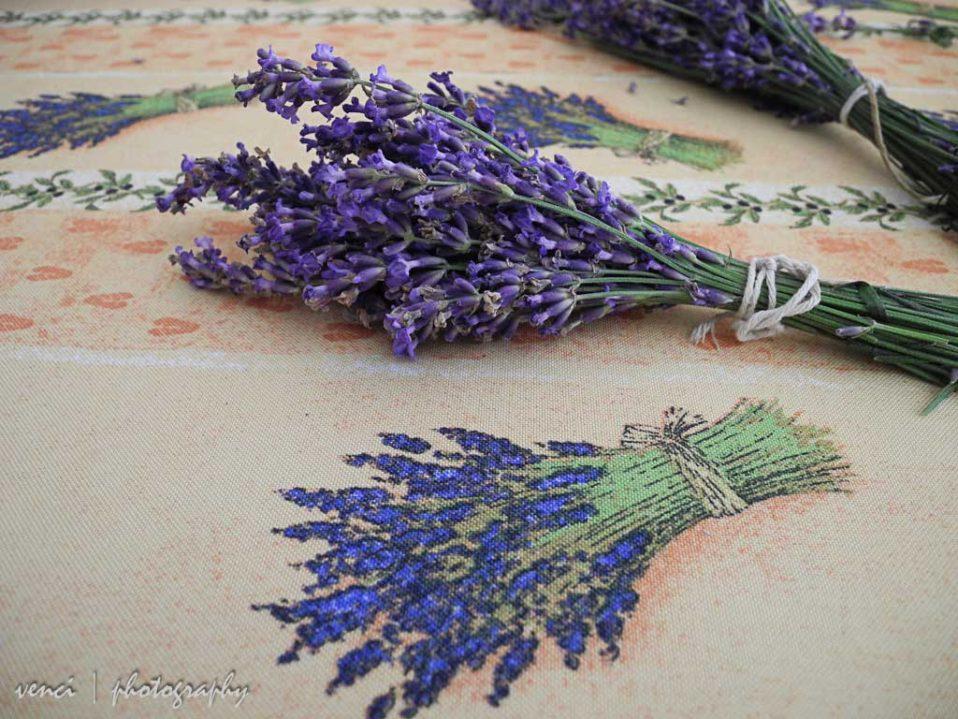 artistic reflection, Lavender